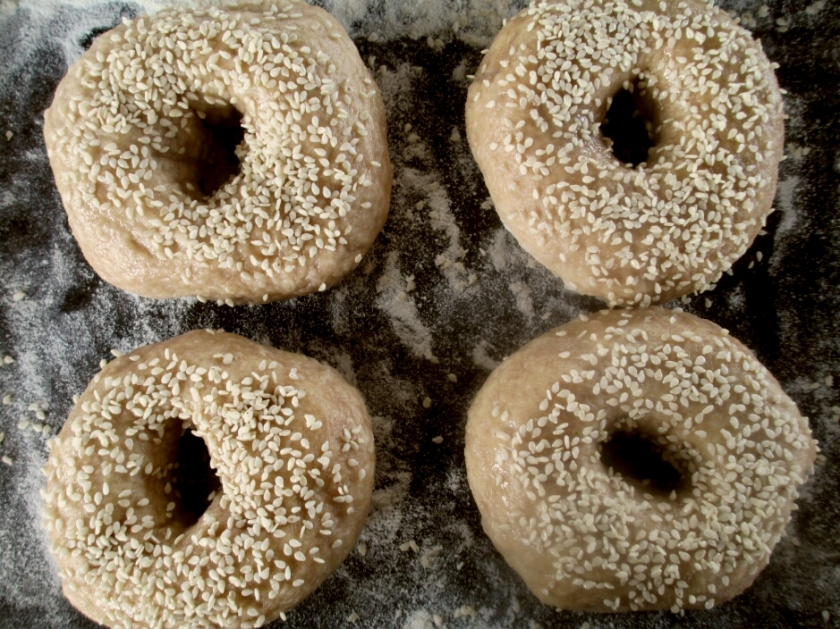 sesame bagels ready for the oven